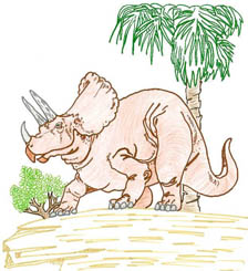 Fossil activity, Dinosaur placemat. Photo Myrna Martin